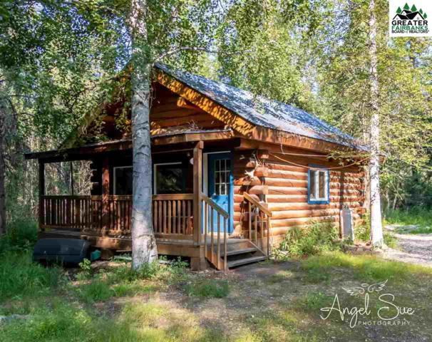 867 Constitution Drive, Fairbanks, AK 99709 (MLS #141603) :: Madden Real Estate