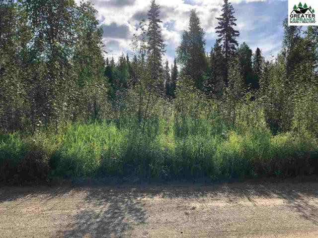 nhn Onyx Road, North Pole, AK 99705 (MLS #141617) :: Powered By Lymburner Realty