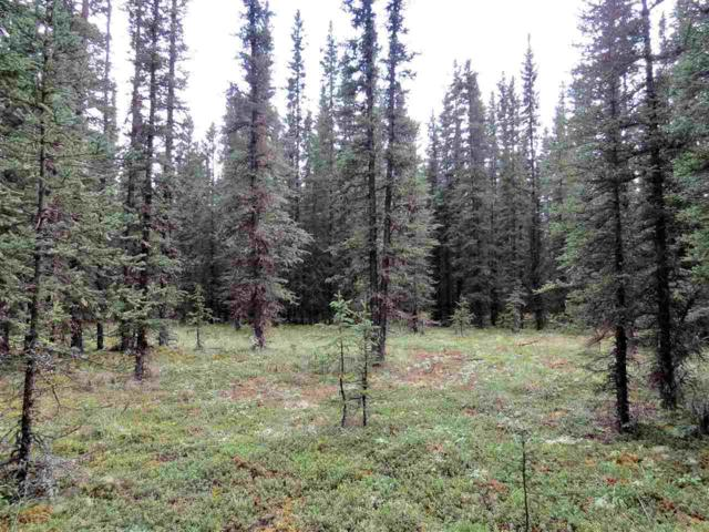 1G Unnamed Road, Tok, AK 99780 (MLS #141637) :: Powered By Lymburner Realty