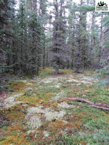 1H Unnamed Road, Tok, AK 99780 (MLS #141638) :: Powered By Lymburner Realty