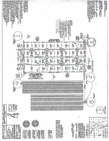 L1 Cordelia Way, Delta Junction, AK 99737 (MLS #141658) :: Madden Real Estate