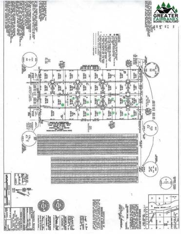 L3 Cordelia Way, Delta Junction, AK 99737 (MLS #141675) :: RE/MAX Associates of Fairbanks
