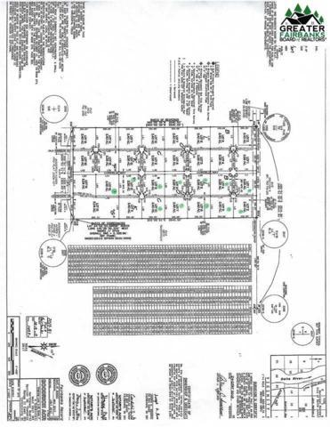L12 Cordelia Way, Delta Junction, AK 99737 (MLS #141682) :: RE/MAX Associates of Fairbanks