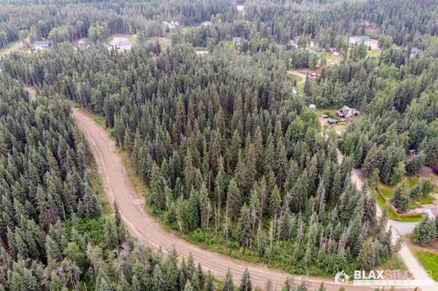 NHN Maude Boyle Drive, North Pole, AK 99705 (MLS #141710) :: Powered By Lymburner Realty