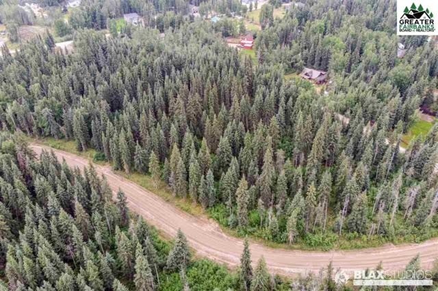 NHN Maude Boyle Drive, North Pole, AK 99705 (MLS #141712) :: Powered By Lymburner Realty