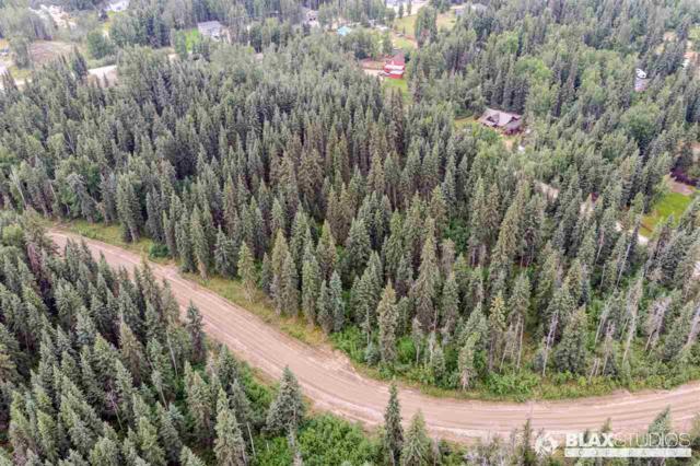NHN Lowood, North Pole, AK 99705 (MLS #141716) :: Powered By Lymburner Realty