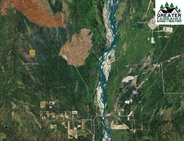 nhn Parks Highway, Nenana, AK 99737 (MLS #141737) :: Powered By Lymburner Realty