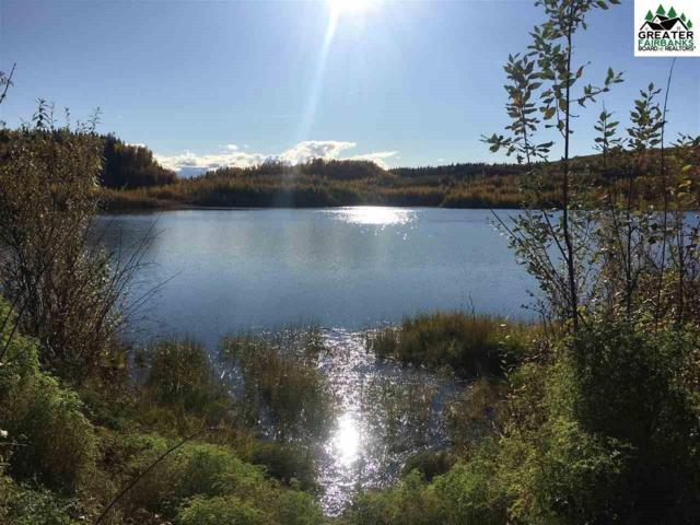 nhn Parks Highway, Fairbanks, AK 99709 (MLS #141774) :: Powered By Lymburner Realty