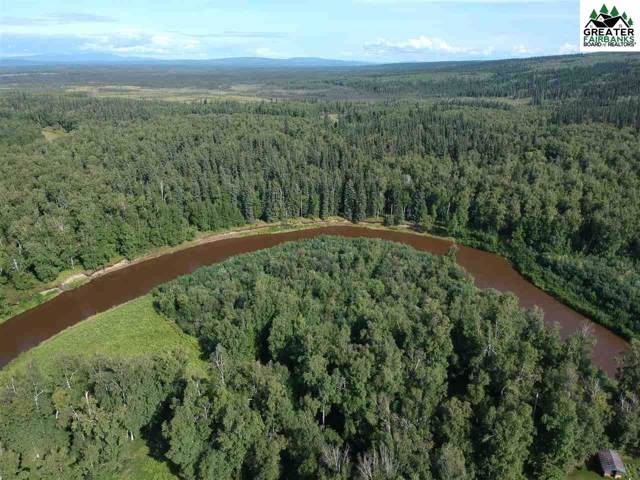 None Assigned, Chatanika River, AK 99708 (MLS #141890) :: Powered By Lymburner Realty