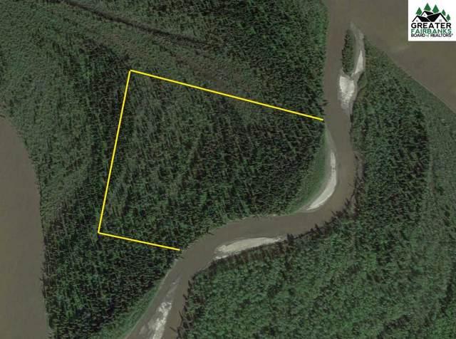 NHN Kantishna River, Nenana, AK 99760 (MLS #141900) :: Madden Real Estate