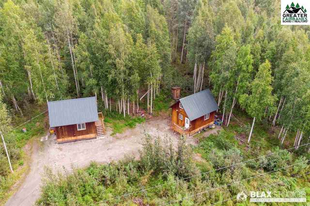 560 Moose Trot Avenue, Fairbanks, AK 99712 (MLS #141971) :: Madden Real Estate