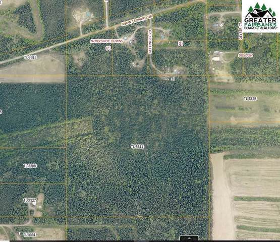 NHN Gettinger Road, Fairbanks, AK 99716 (MLS #141972) :: Madden Real Estate
