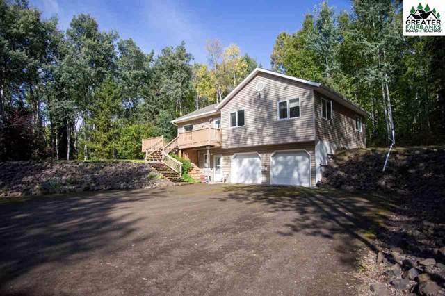 642 De Pauw Drive, Fairbanks, AK 99709 (MLS #141974) :: Powered By Lymburner Realty