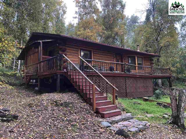 1295 Little Fox Trail, Fairbanks, AK 99712 (MLS #142005) :: Madden Real Estate