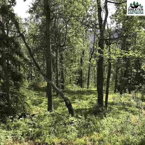 3854 Frenchman Road, Fairbanks, AK 99709 (MLS #142015) :: Madden Real Estate