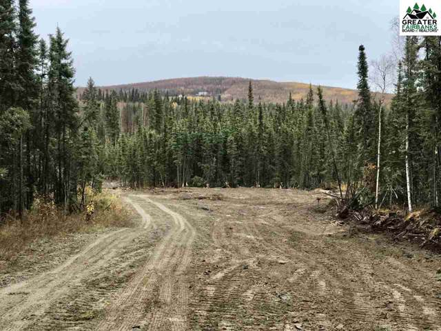 720 Nordale Road, North Pole, AK 99705 (MLS #142198) :: Powered By Lymburner Realty