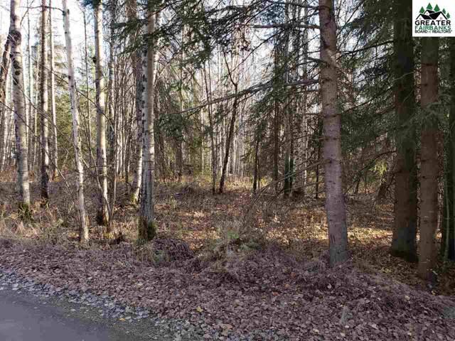 NHN Shields Court, Fairbanks, AK 99712 (MLS #142257) :: Powered By Lymburner Realty