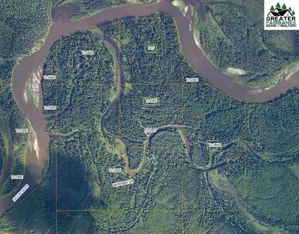 NHN Salcha River, Salcha, AK 99714 (MLS #142396) :: Madden Real Estate