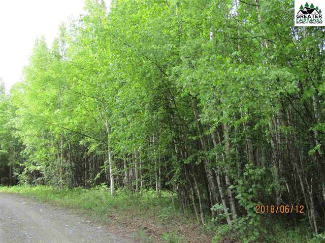 L4 Mitchell Place, Delta Junction, AK 99737 (MLS #142440) :: Madden Real Estate