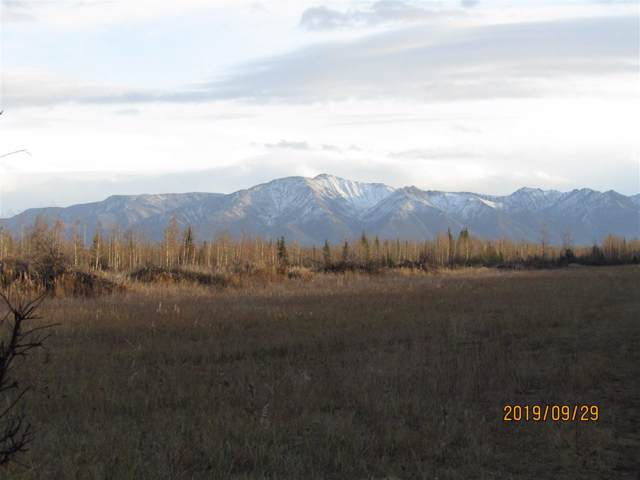 Tract O & P Quail Road, Delta Junction, AK 99737 (MLS #142443) :: RE/MAX Associates of Fairbanks