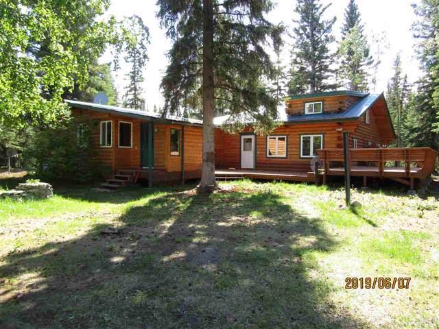 4948 King Salmon, Delta Junction, AK 99737 (MLS #142471) :: RE/MAX Associates of Fairbanks