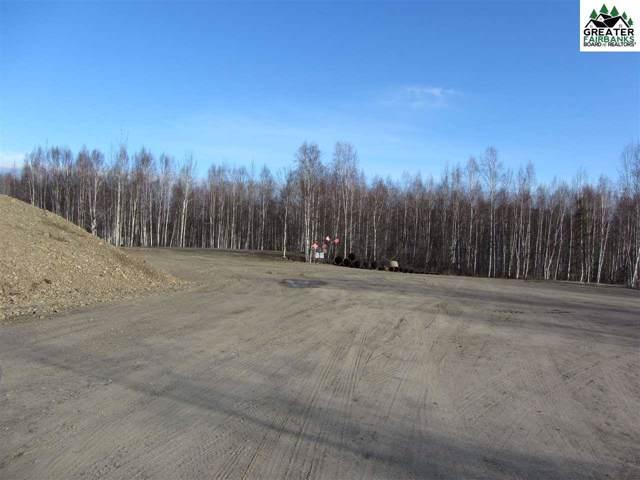 6236 Chena Hot Springs Road, Fairbanks, AK 99712 (MLS #142484) :: Madden Real Estate
