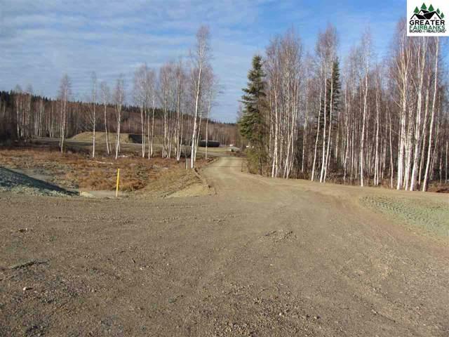 6194 Chena Hot Springs Road, Fairbanks, AK 99712 (MLS #142485) :: Madden Real Estate
