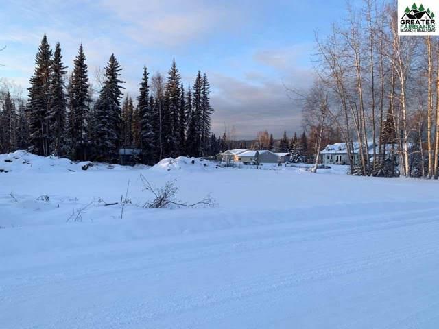 5111 Decathlon Avenue, Fairbanks, AK 99709 (MLS #142609) :: Madden Real Estate