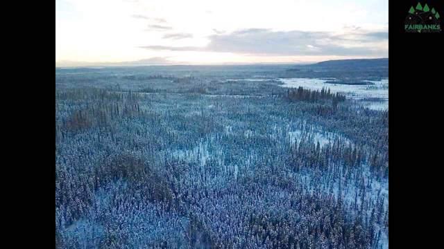 NHN Woodpecker Lane, Fairbanks, AK 99712 (MLS #142704) :: Madden Real Estate