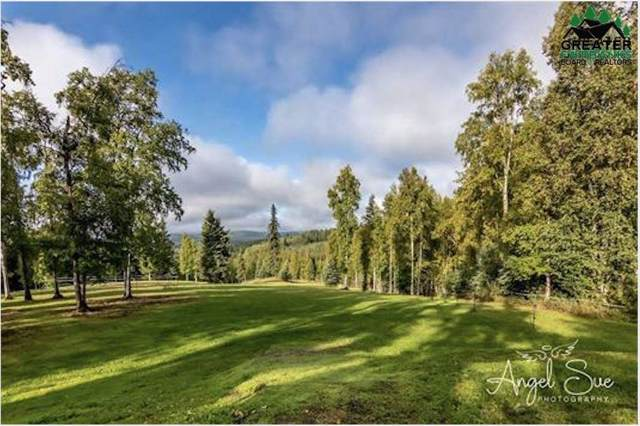 NHN Herning Road, Fairbanks, AK 99712 (MLS #142730) :: Madden Real Estate