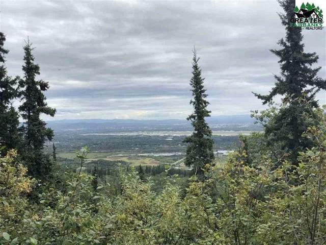 1454 Chena Ridge Road, Fairbanks, AK 99709 (MLS #142793) :: RE/MAX Associates of Fairbanks