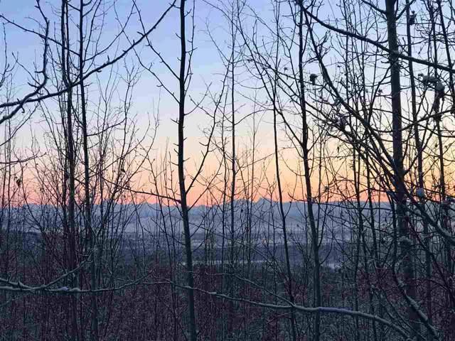 NHN Crestline Drive, Fairbanks, AK 99712 (MLS #142882) :: Madden Real Estate