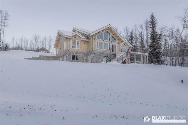 995 Ellesmere Drive, Fairbanks, AK 99709 (MLS #142914) :: Madden Real Estate