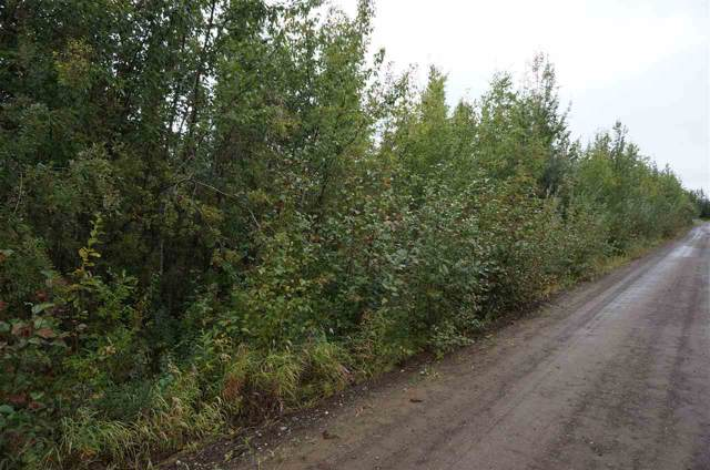 NHN Tootie Street, North Pole, AK 99705 (MLS #142933) :: Powered By Lymburner Realty