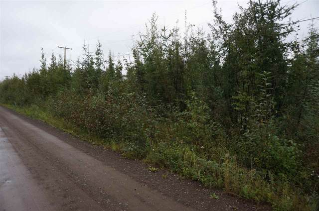 NHN Tootie Street, North Pole, AK 99705 (MLS #142934) :: Powered By Lymburner Realty
