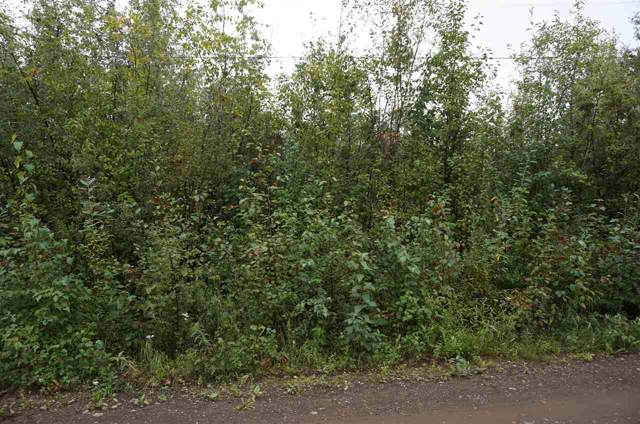 NHN Tootie Street, Fairbanks, AK 99705 (MLS #142936) :: Powered By Lymburner Realty