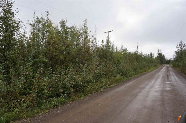 NHN Tootie Street, North Pole, AK 99705 (MLS #142937) :: Powered By Lymburner Realty