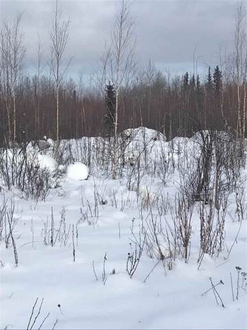 NHN Sangria Avenue, North Pole, AK 99705 (MLS #142952) :: Madden Real Estate