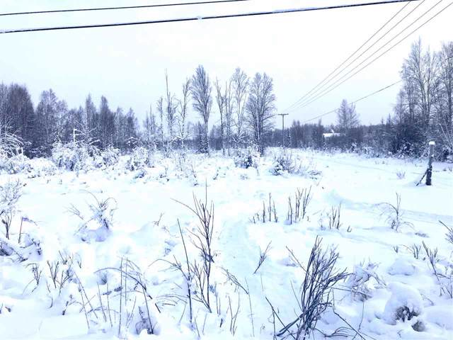 NHN Benn Lane, North Pole, AK 99705 (MLS #142975) :: Madden Real Estate