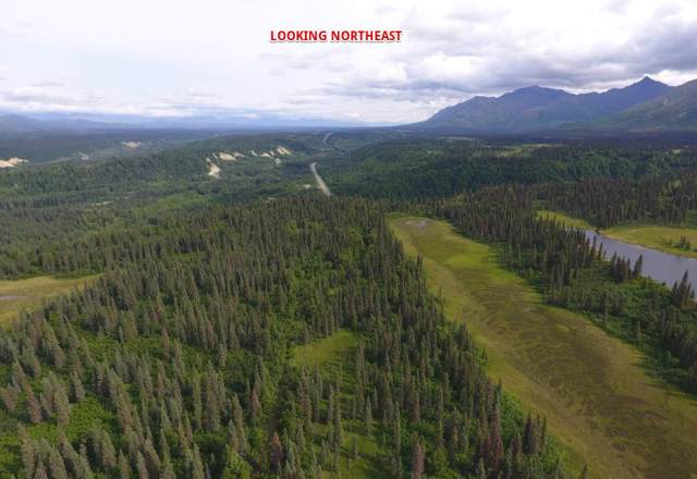 NHN Parks Highway, Cantwell, AK 99729 (MLS #142997) :: RE/MAX Associates of Fairbanks