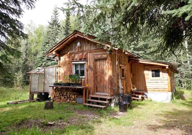 7104 Sanshore Drive, Salcha, AK 99714 (MLS #143044) :: Madden Real Estate
