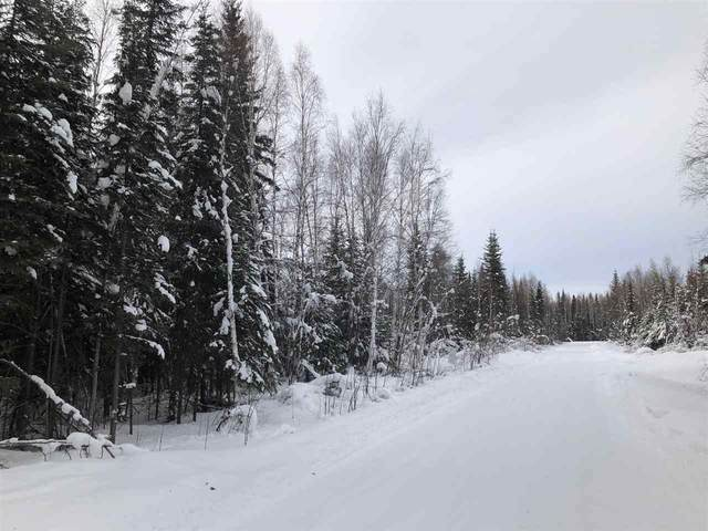 NHN Riddle Court, North Pole, AK 99705 (MLS #143118) :: Powered By Lymburner Realty