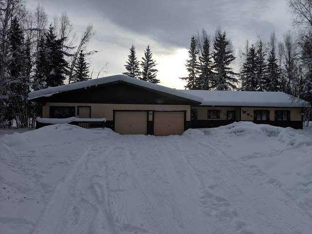 1097 Dee Lane, North Pole, AK 99705 (MLS #143126) :: Madden Real Estate