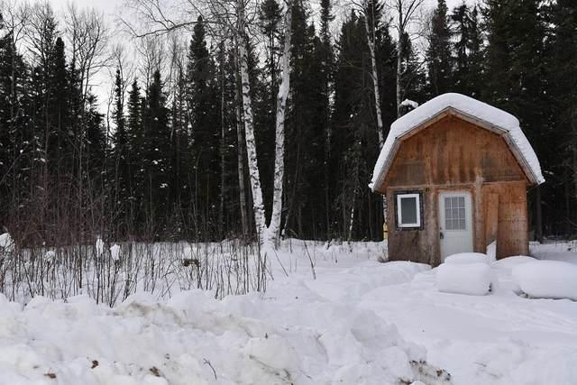 7044 Sweren Loop, Fairbanks, AK 99712 (MLS #143128) :: Powered By Lymburner Realty