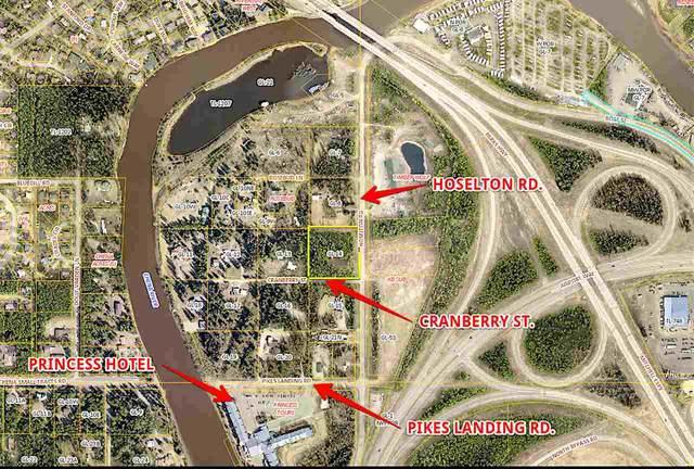 NHN Hoselton Road, Fairbanks, AK 99709 (MLS #143132) :: Powered By Lymburner Realty