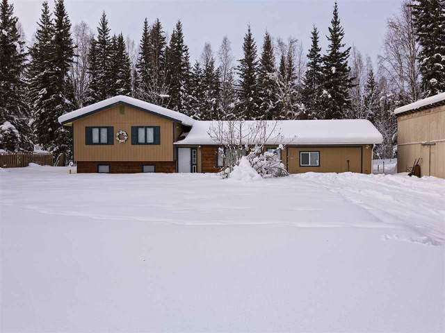 1009 Haggarty Street, North Pole, AK 99705 (MLS #143139) :: Madden Real Estate