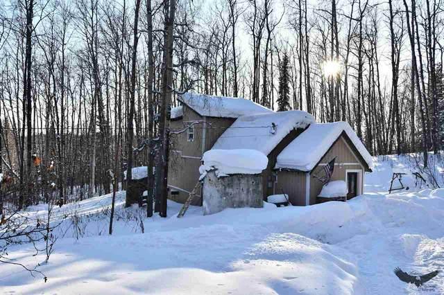 385 Winter Street, Fairbanks, AK 99712 (MLS #143243) :: Madden Real Estate