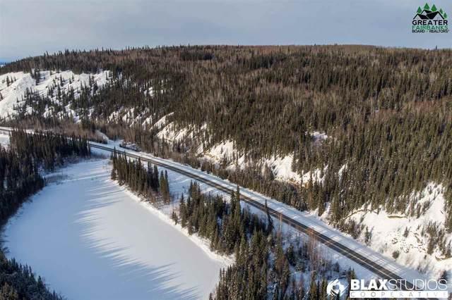 NHN Richardson Highway, Salcha, AK 99714 (MLS #143366) :: Madden Real Estate