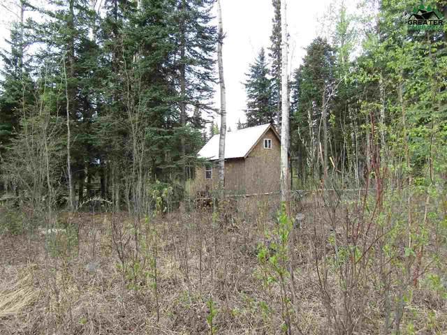 TR C-3 Tanana Loop Extension, Delta Junction, AK 99737 (MLS #143372) :: Madden Real Estate