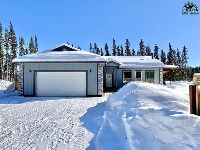 2594 Jack Warren Road, Delta Junction, AK 99737 (MLS #143441) :: Madden Real Estate